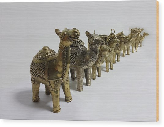 Group Of Camels Wood Print