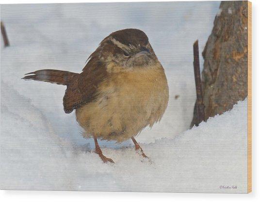 Grumpy Wren Wood Print