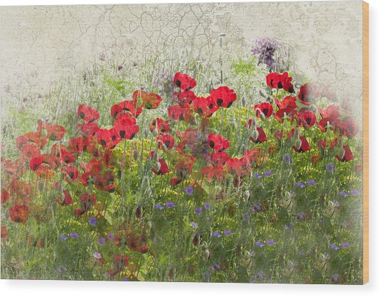 Grunge Poppy Field Wood Print by Lesley Rigg