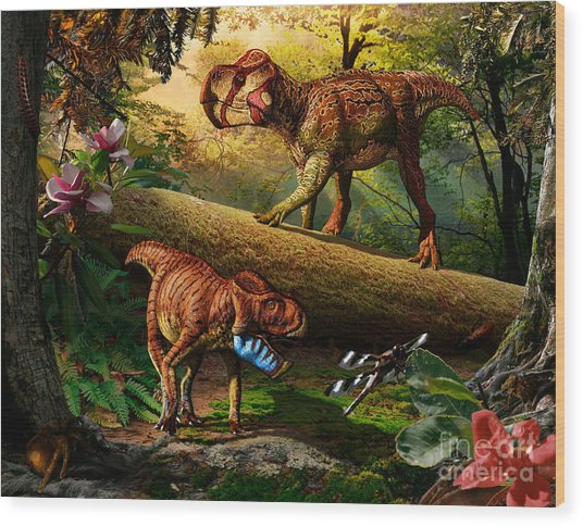 Gryphoceratops And Unescoceratops Wood Print