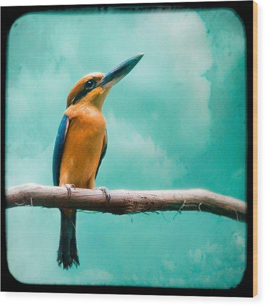 Guam Kingfisher - Exotic Birds Wood Print