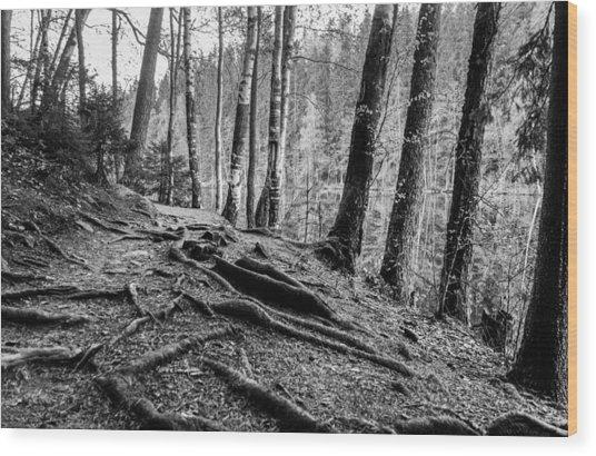 Guardians Wood Print