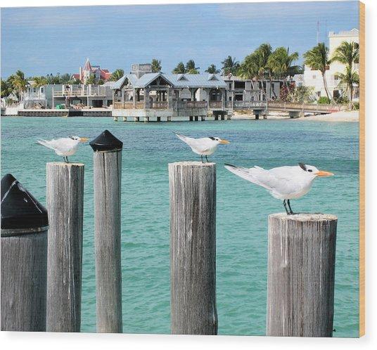 Guardians Of Key West Wood Print