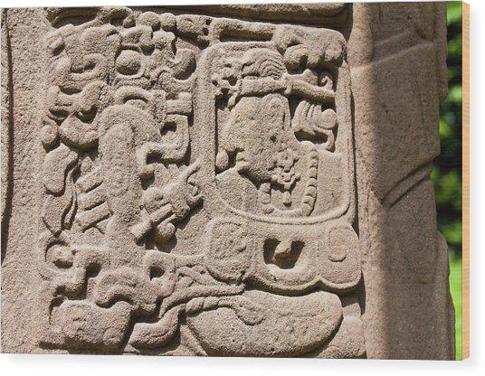 Guatemala, Quirigua Wood Print