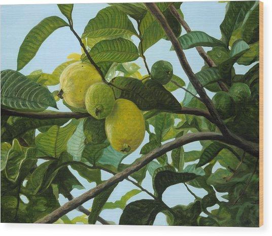 Guava Wood Print