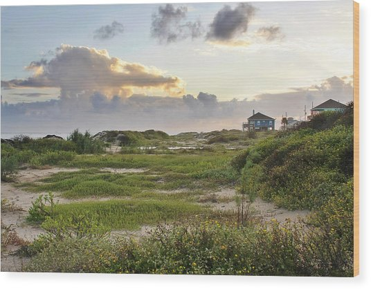 Gulf Coast Galveston Tx Wood Print
