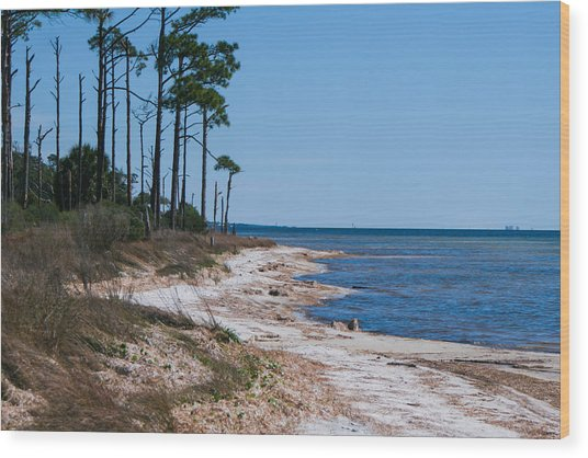 Gulf Island National Seashore 2 Wood Print