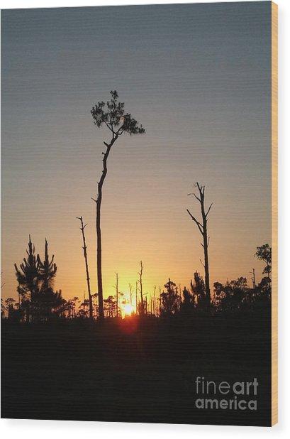 Gulf Shores Sunset Wood Print