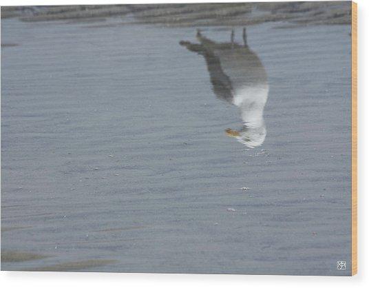 Gull At The Beach Wood Print