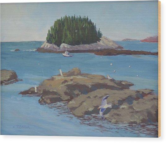 Gulls At Five Islands Wood Print