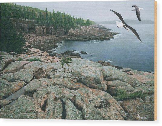 Gulls At Monument Cove Wood Print