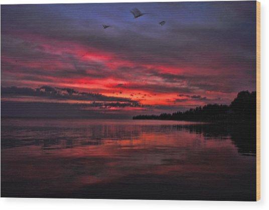 Gulls At Sunrise Wood Print