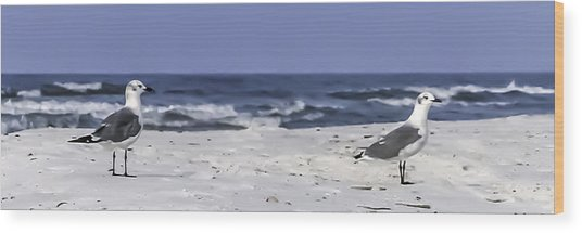 Gulls By The Sea Wood Print by CarolLMiller Photography