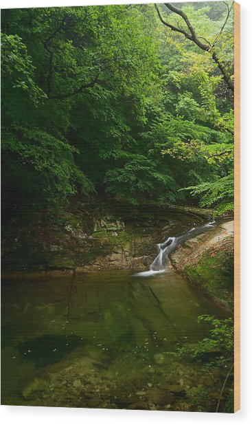 Gyeryongsan Stream And Pool Wood Print