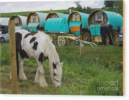 Gypsy Cob And Wagons Wood Print