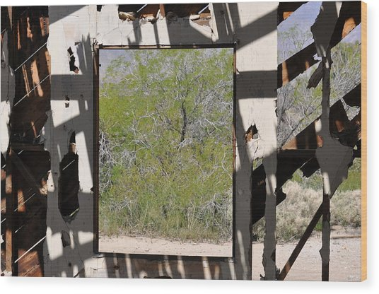 Had A Nice View Wood Print by Pamela Schreckengost