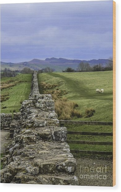 Hadrian's Wall Wood Print