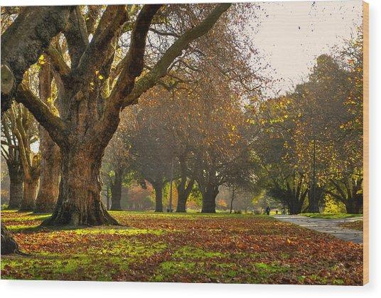 Hagley In Autumn Wood Print