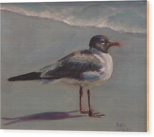 Haha Gull Wood Print by Karen Langley