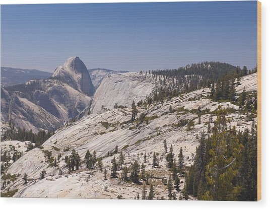Half Dome And The High Sierra Wood Print by Richard Berry