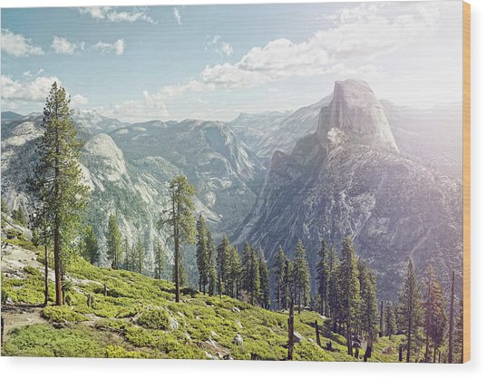 Half Dome In Yosemite With Foreground Wood Print