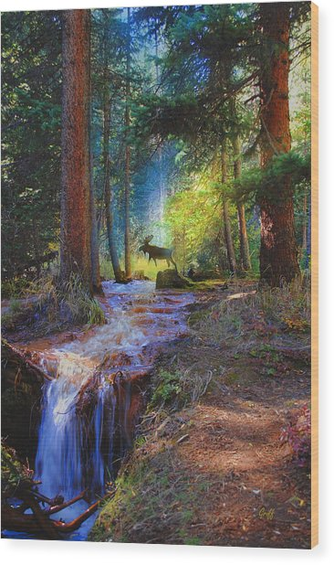 Hall Valley Moose Wood Print