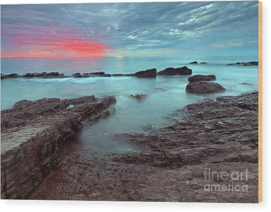 Hallett Cove Sunset Wood Print by Bill  Robinson