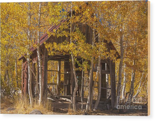 Hallowed Home Wood Print