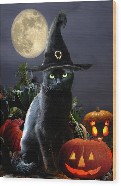 Witchy Black Halloween Cat Wood Print