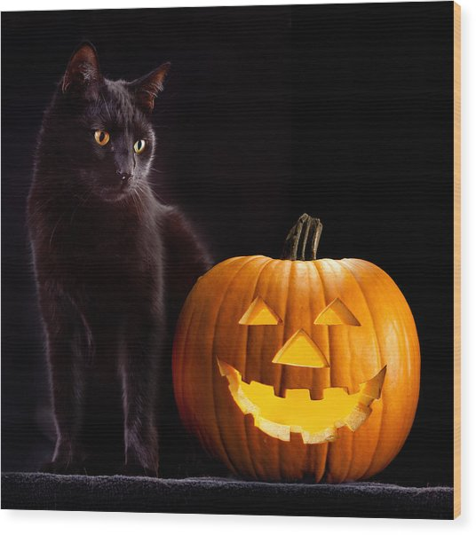 Halloween Pumpkin And Cat Wood Print
