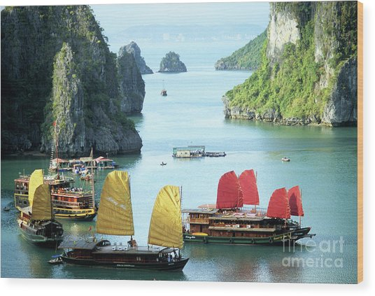 Halong Bay Sails 01 Wood Print