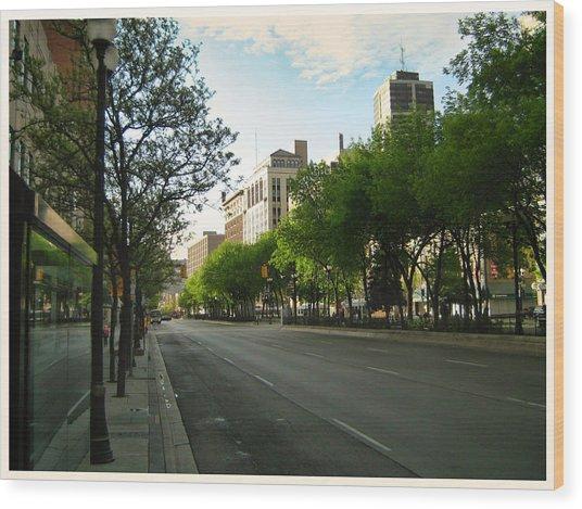 Wood Print featuring the photograph Hamilton At Dawn by Shawn Dall