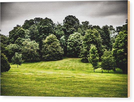 Hampstead Heath Greens Wood Print