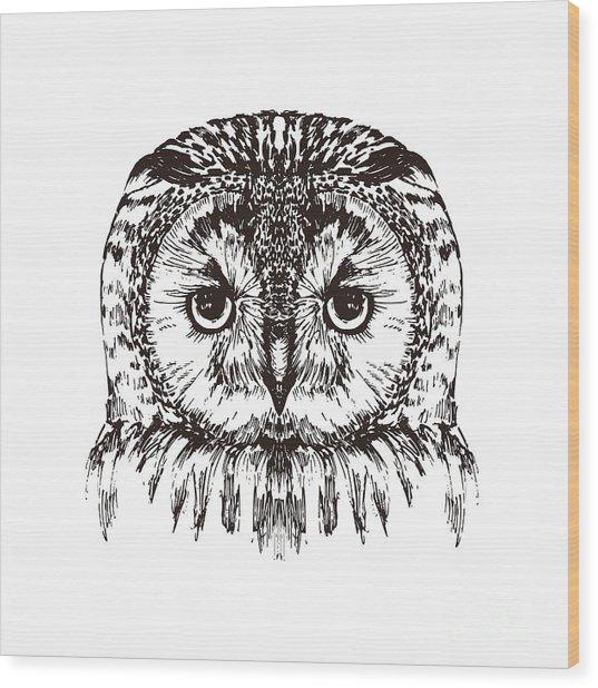 Hand Drawn Owl Portrait, Vector Wood Print