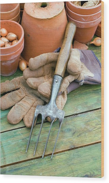 Hand Fork And Gardening Gloves Wood Print