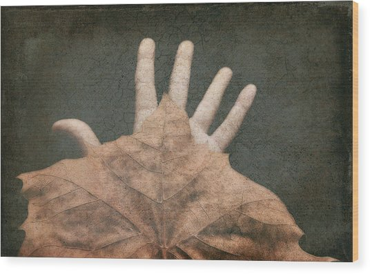 Hand Of Nature Wood Print