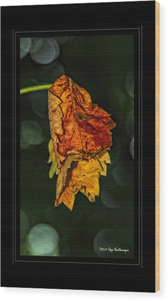 Hanging Gold Framed Wood Print