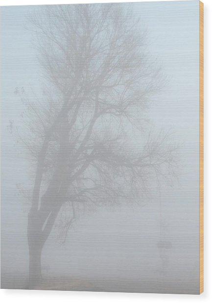 Hangman's Tree Wood Print