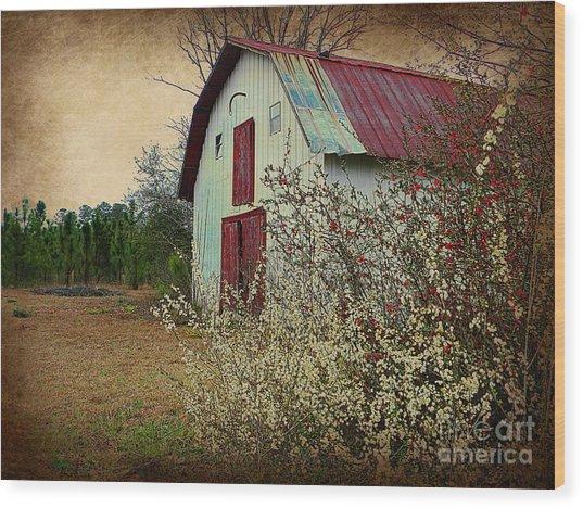 Happy Barn In Spring Wood Print by Lorraine Heath