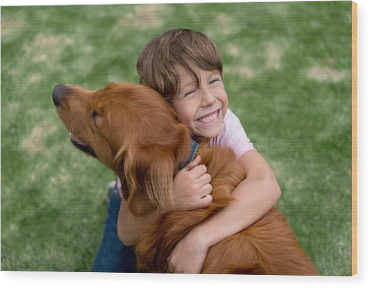 Happy Boy With A Beautiful Dog Wood Print by Andresr