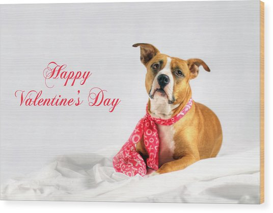 Fifty Shades Of Pink - Happy Valentine's Day Wood Print