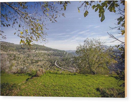 Har  Eitan Wood Print