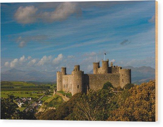 Harlech Castle Wood Print by David Ross
