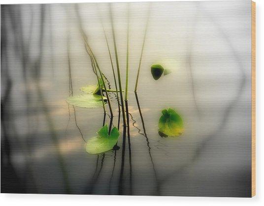 Harmony Zen Photography II Wood Print
