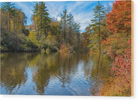 Harris Lake In Autumn Wood Print