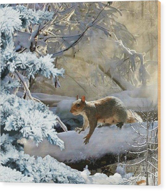 Harry In Winter Wood Print