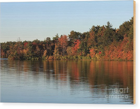 Hart Pond Golden Hour Wood Print