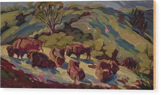Hart Ranch Buffalo Wood Print