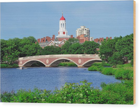 Harvard University Campus In Boston Wood Print
