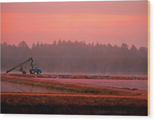 Harvest Morning Wood Print